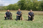 From left to right (K-9 Ofc. Justin Doherty/PSD Deuce, K-9 Trainer/Ofc. Cory Flaming/PSD Mack, K-9 Ofc. Ben Hardin/PSD Cezar)